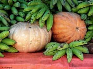 bananas and pumpkins
