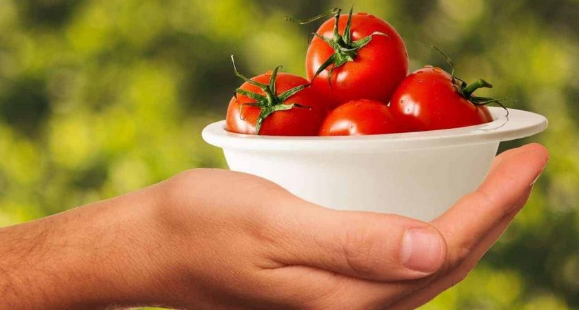 tomatoes 1993695 1280