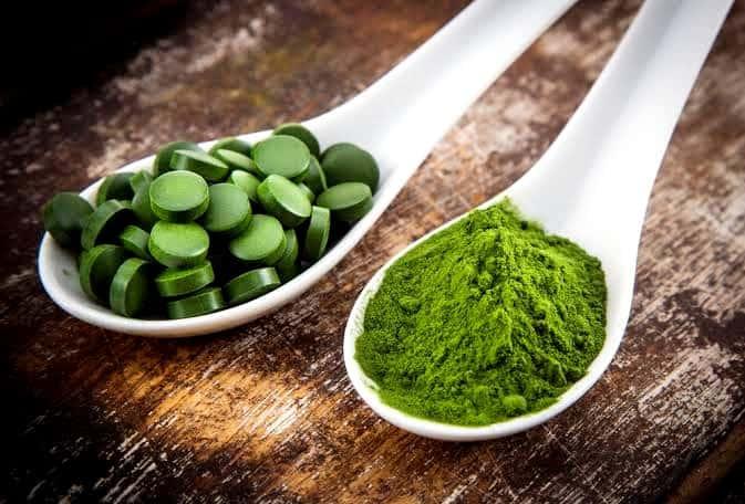 Spoon dried algae and algae tablets