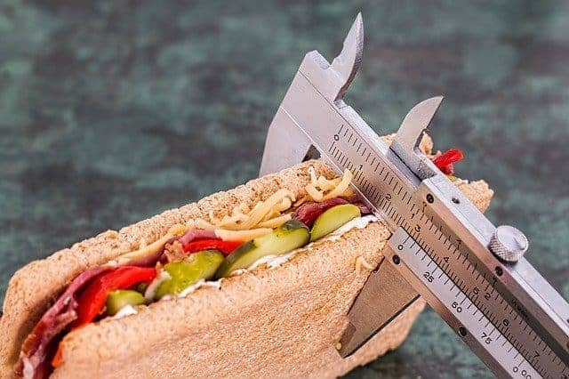A sandwich measured with a caliper