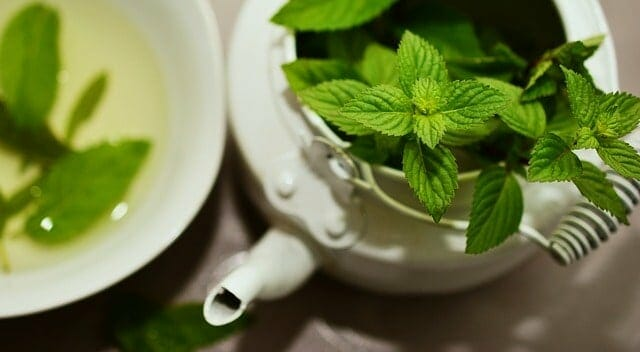 herbs in a teapot