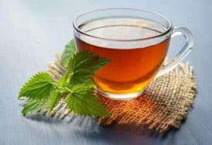 A cup of lemon balm infusion