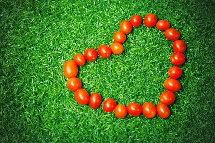 Tomatoes arranged in a heart on the grass