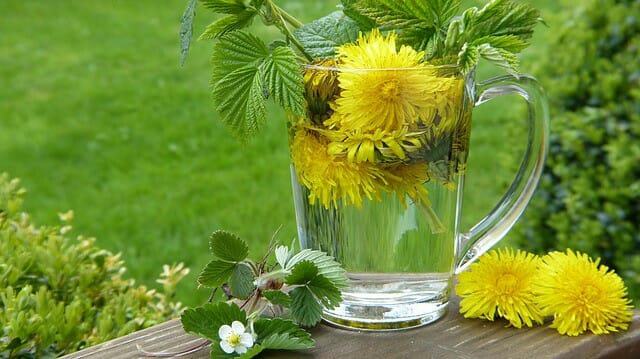 herbs in a jug