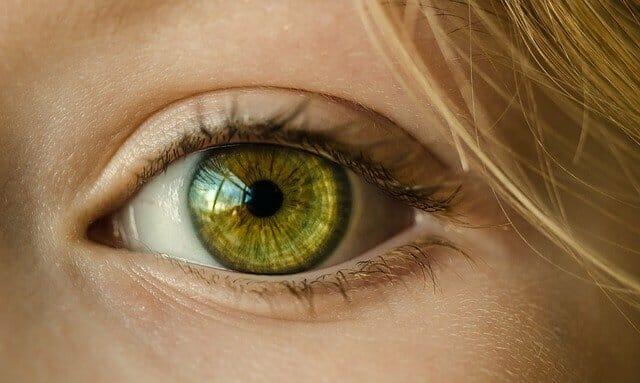 The female eye