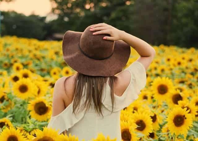 a woman walks through a field of sunflowers