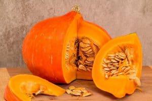 Sliced pumpkin fruit